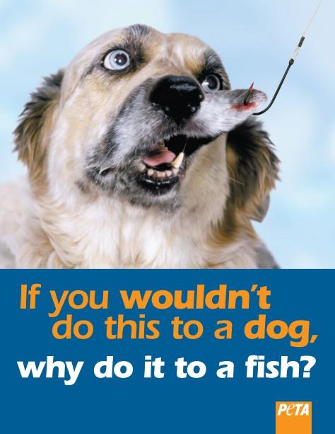 dog fish.elevator.qrk