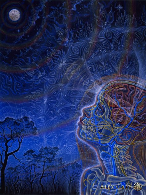 """Wonder"", uma obra de Alex Grey"