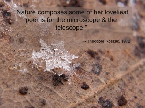 Roszak science-quotes-32-728