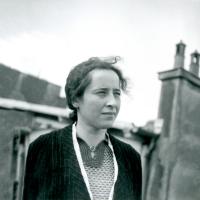 """A Banalidade do Mal e sua tenebrosa atualidade"" - Reflexões na companhia de Hannah Arendt, Zygmunt Bauman, Stanley Milgram, G. Agamben, Márcia Tiburi, entre outros"